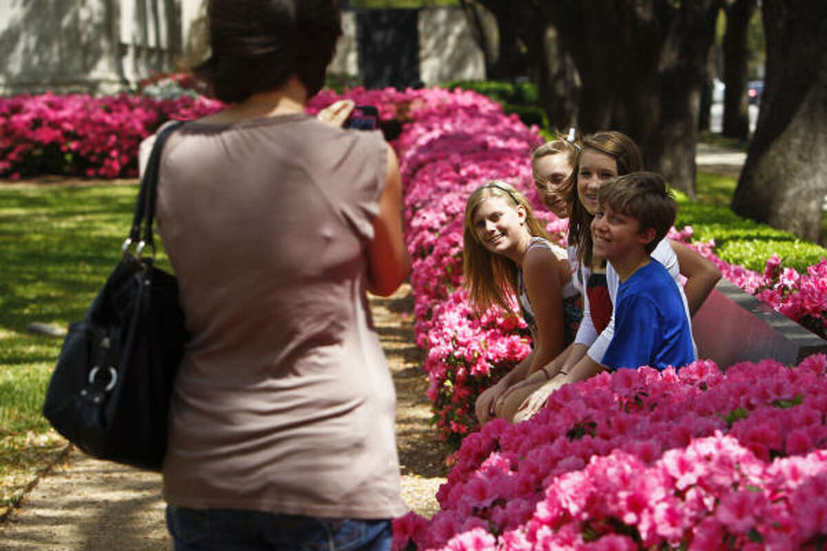 Lynne Barr takes a photo of Abby Barr, 13, Hannah Barr, 14, Emma Yates, 14, and John Barr, 13 as they sit on a bench near the blooming azaleas on the South Lawn of the Museum of Fine Arts Houston, between the MFAH and Mecom Fountain.