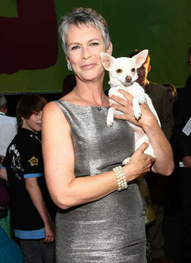 Jamie Lee Curtis Held a Patent for an Invention