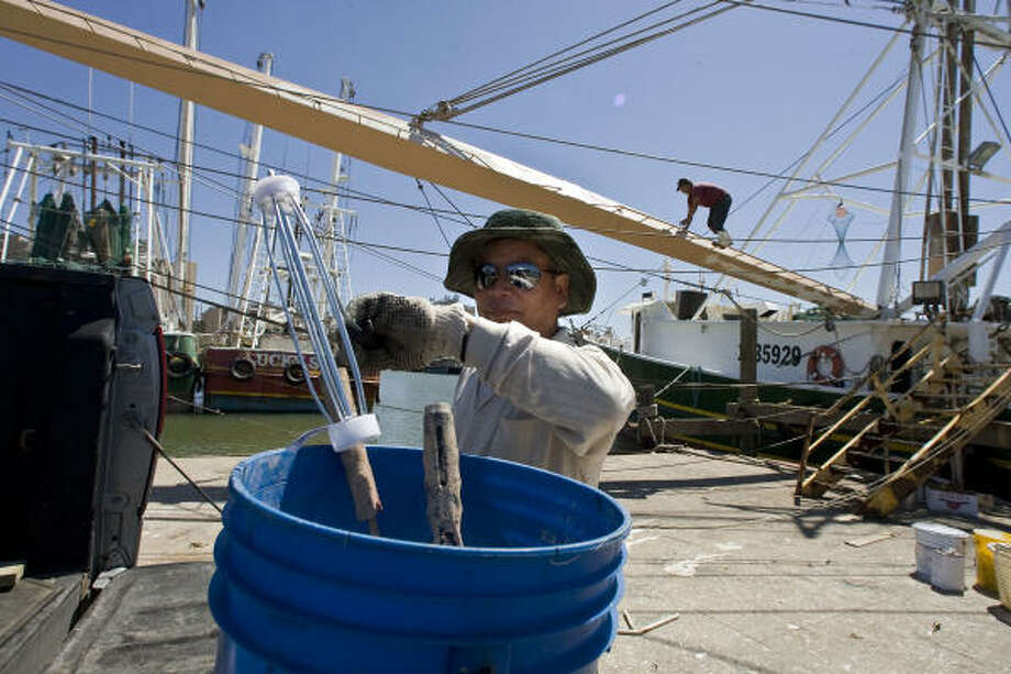 Den Nguyen, owner of the Master Johnny, prepares to paint his boat at Galveston's Texas Gulf Seafood docks. Photo: James Nielsen, Chronicle