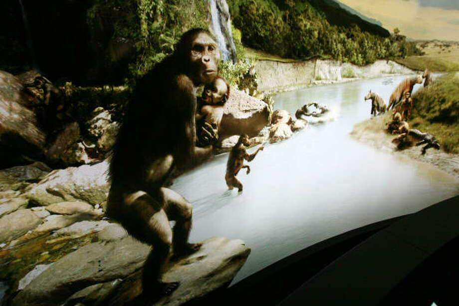 A mural showing a scene of what Lucy's life might of been like serves as a back drop at the Lucy exhibit at the Houston Museum of Natural Science. Photo: BILLY SMITH II, Houston Chronicle