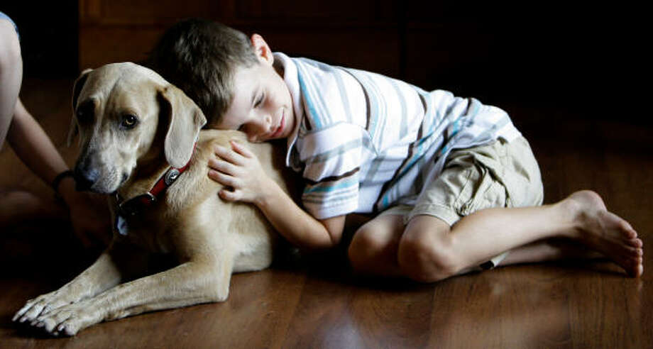 Daizy gets a hug from Ethan Bauer.  Photo: Melissa Phillip, Chronicle