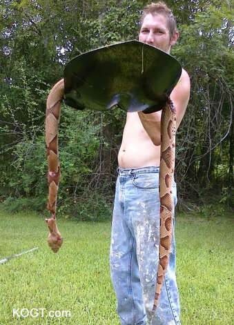 Orange County man finds large copperhead snake - Beaumont ...