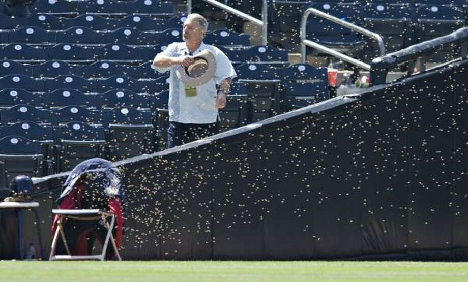 An usher tries to move a swarm of bees as they cover a chair in left field at Petco Park. Photo: Denis Poroy, AP