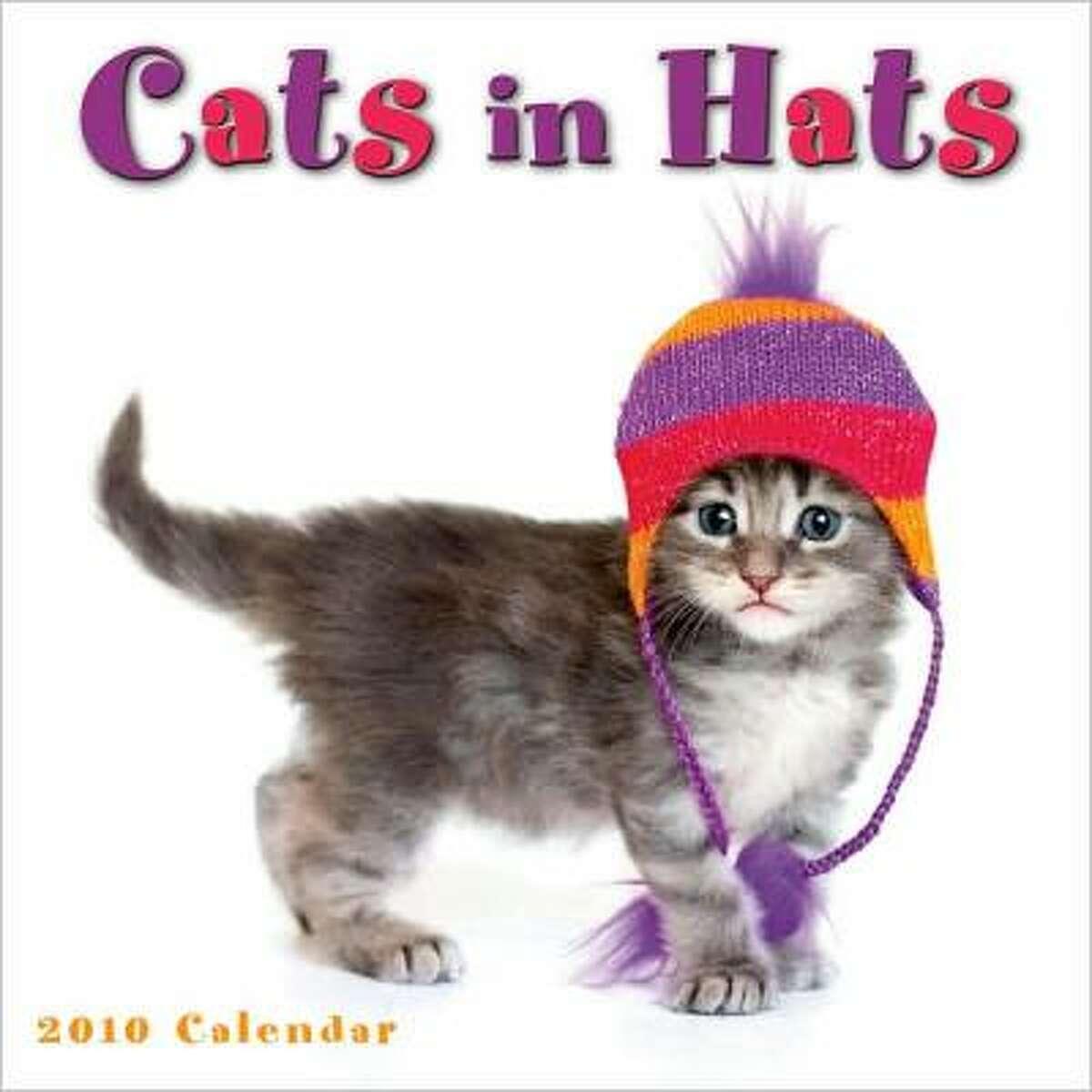 Cats in Hats mini wall calendar
