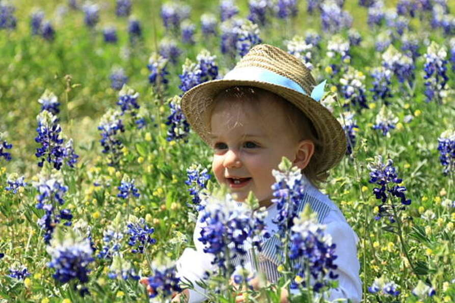 Easter BluebonnetsParenting advice, blogs and forums at