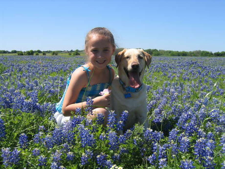 Bluebonnet BuddiesParenting advice, blogs and forums at MomHouston.com. Photo: May123, Chron.commons