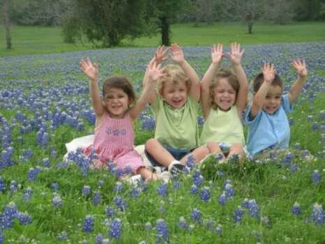 Our bluebonnets grow THIS HIGHParenting advice, blogs and forums at MomHouston.com. Photo: Leilarose68, Chron.commons