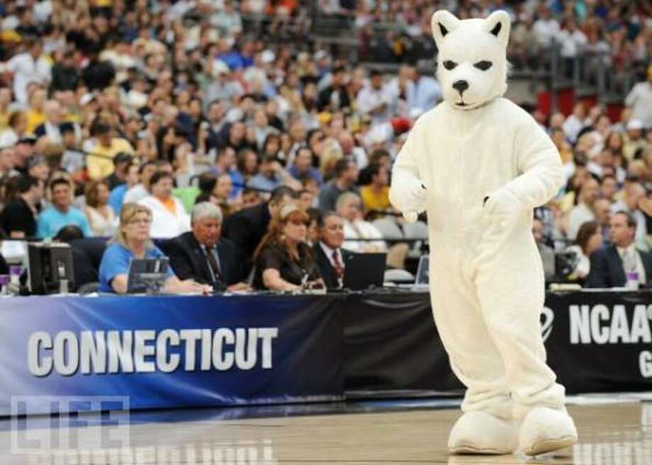 The schoolThe University of Connecticut was founded in 1881 in Storrs, Conn. It is located 1,532 miles from Houston. Its 2010 fall enrollment was 30,034. The university's mascot, Huskies, was chosen by student survey in 1933.