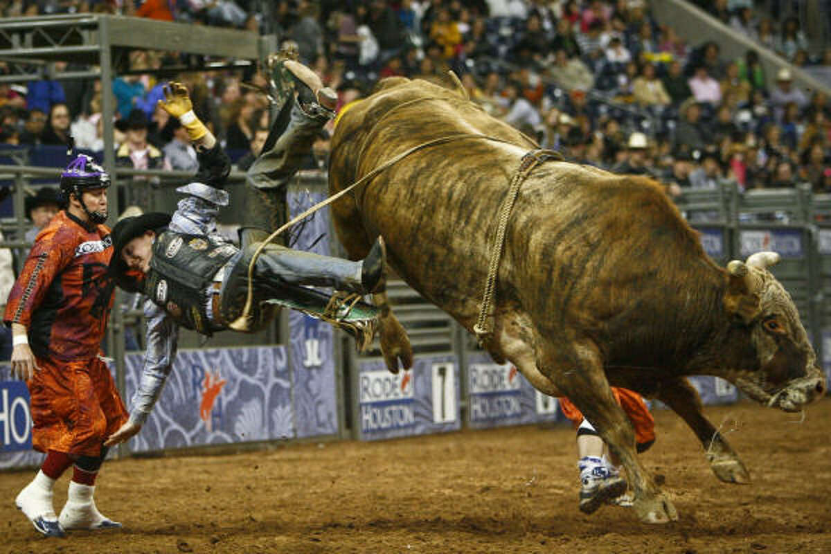 Luke Haught jumps off his bull after successful earning a score of 89.5 in the first round on his way to winning the PRCA Xtreme Bull Riding event with a score of 182.5 to close out the 2010 Houston Livestock Show and Rodeo Houston at Reliant Park.