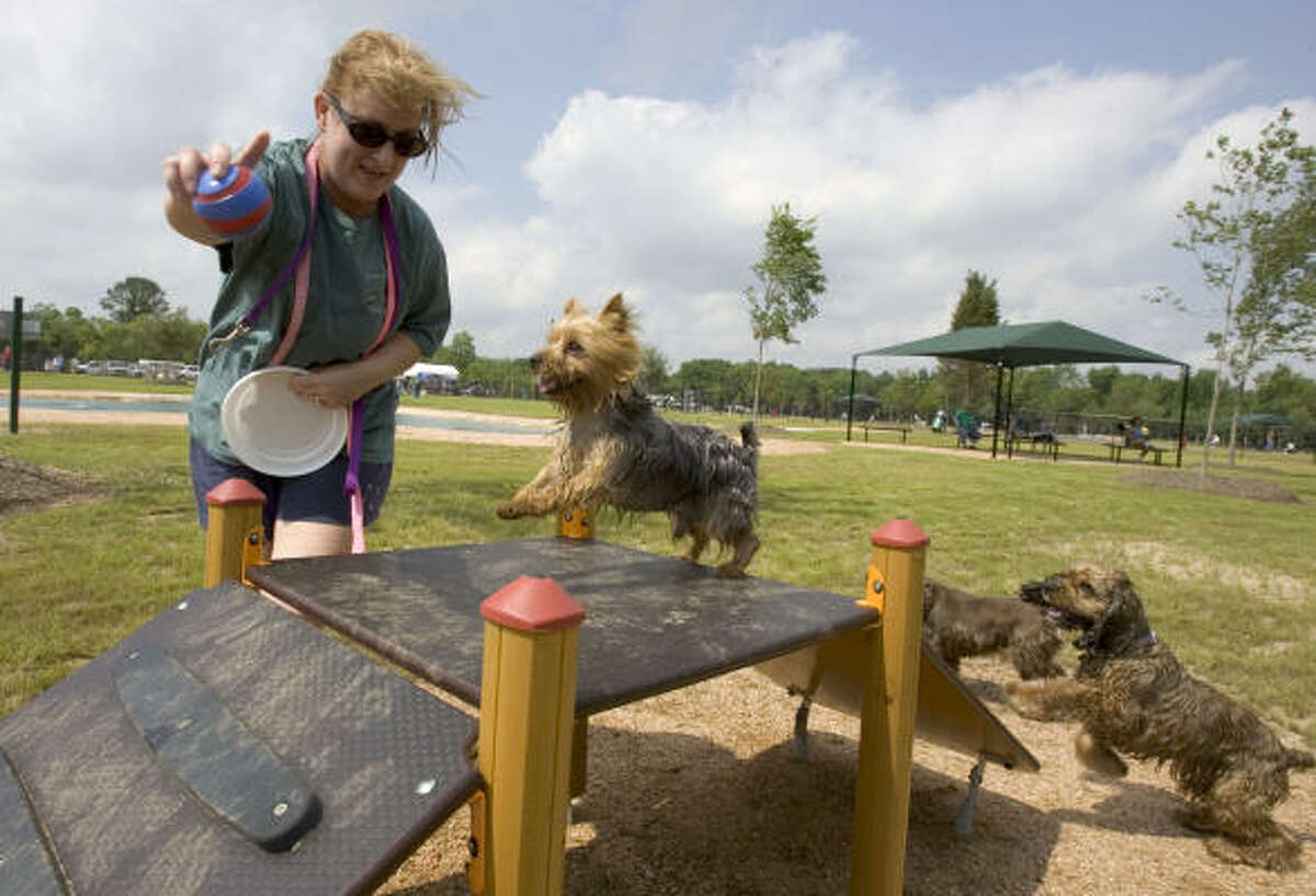 Robin Elliott, of Houston, leads Cosmo, over a ramp obstacle during the dedication ceremony of the Dog Park at Congressman Bill Archer Park today.