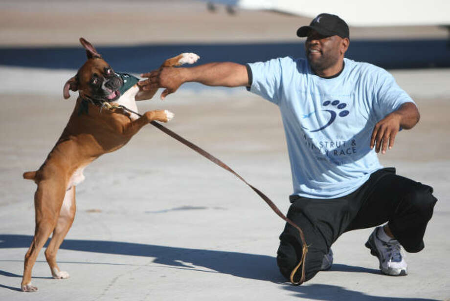 """Aaron Hooey has fun with his boxer """"Rocky"""" during the 2007 Mutt Strut. Photo: Thomas Nguyen, Chronicle File"""