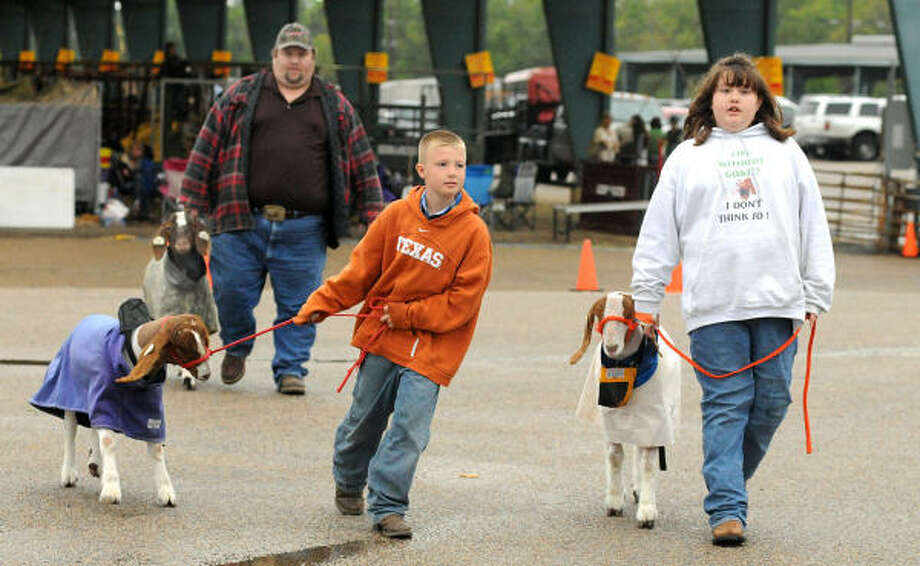 Colton Rogers and Shelby Brown, both of New Caney, walk their goats as Lance Brown follows the duo during the Montgomery County Fair. Photo: David Hopper, For The Chronicle