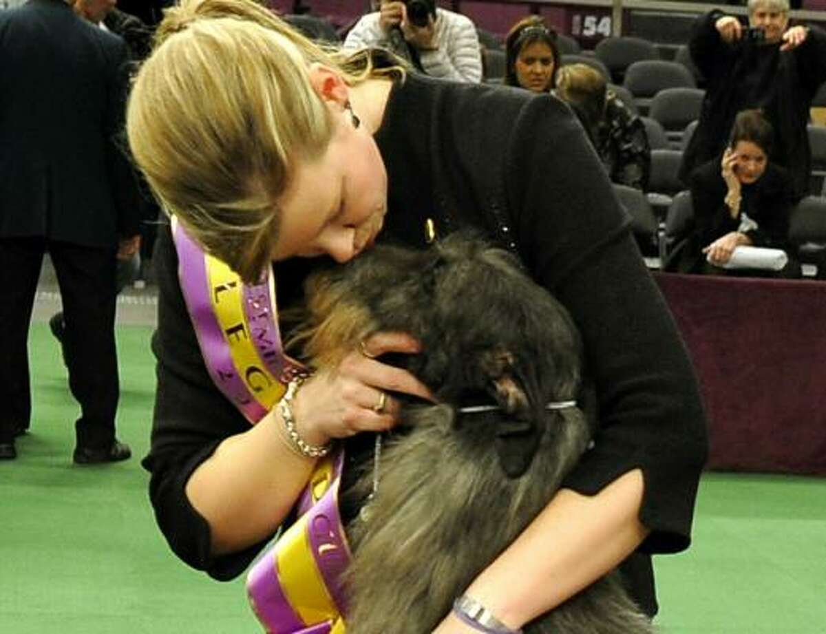 Good dog! Best in Show winner Hickory, a Scottish deerhound, will eat at Sardi's tonight as part of her treats.