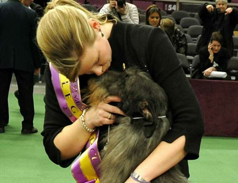Good dog! Best in Show winner Hickory, a Scottish deerhound, will eat at Sardi's tonight as part of her treats. Photo: TIMOTHY A. CLARY, AFP/Getty Images