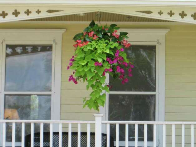New canaan 39 s natural beauty new canaan news for Front porch hanging plants