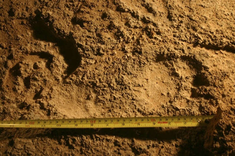 This image released by the National Institute of Anthropology and History of Mexico last week shows one of 13 ancient footprints found in the Coahuila valley of Cuatro Cienegas, Mexico, near the Texas border. Photo: INSTITUTO NACIONAL DE ANTROPOLOG, AP