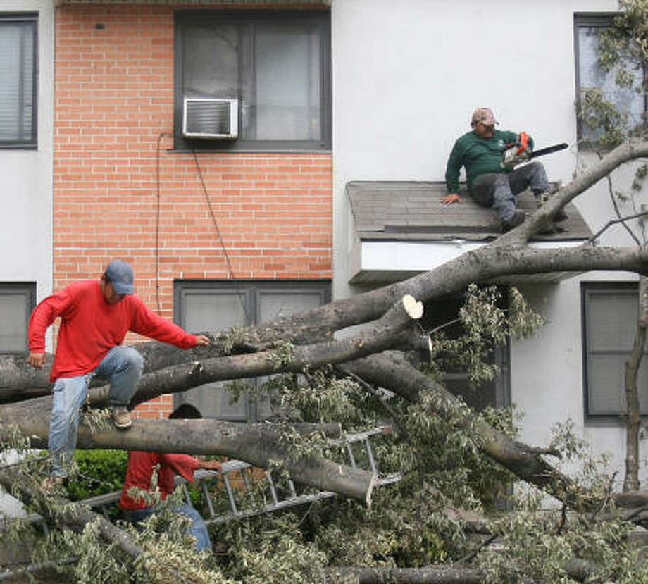 Alberto Ortiz and Jose Luis Rodriguez of Green Planet Landscaping remove debris from a tree that collapsed in front of an apartment at the Kelly Apartments on Friday in Houston. Photo: Mayra Beltran, Chronicle