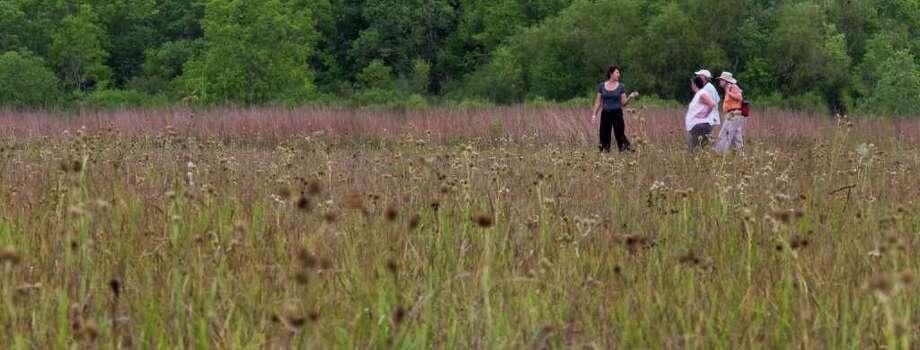 The Nash Prairie in Brazoria County. Photo: Nick De La Torre, Staff / © 2010 Houston Chronicle
