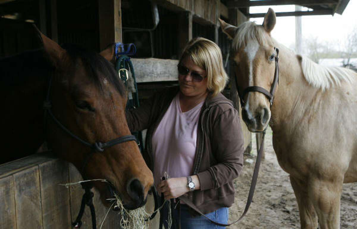 Sally Stellberg saved two horses from slaughter. Joe, left, and Twinky are being kept at the Spring Branch Stables. Studies by Texas A&M University show that the Houston area boasts the highest concentration of horses among the nation's large urban areas.