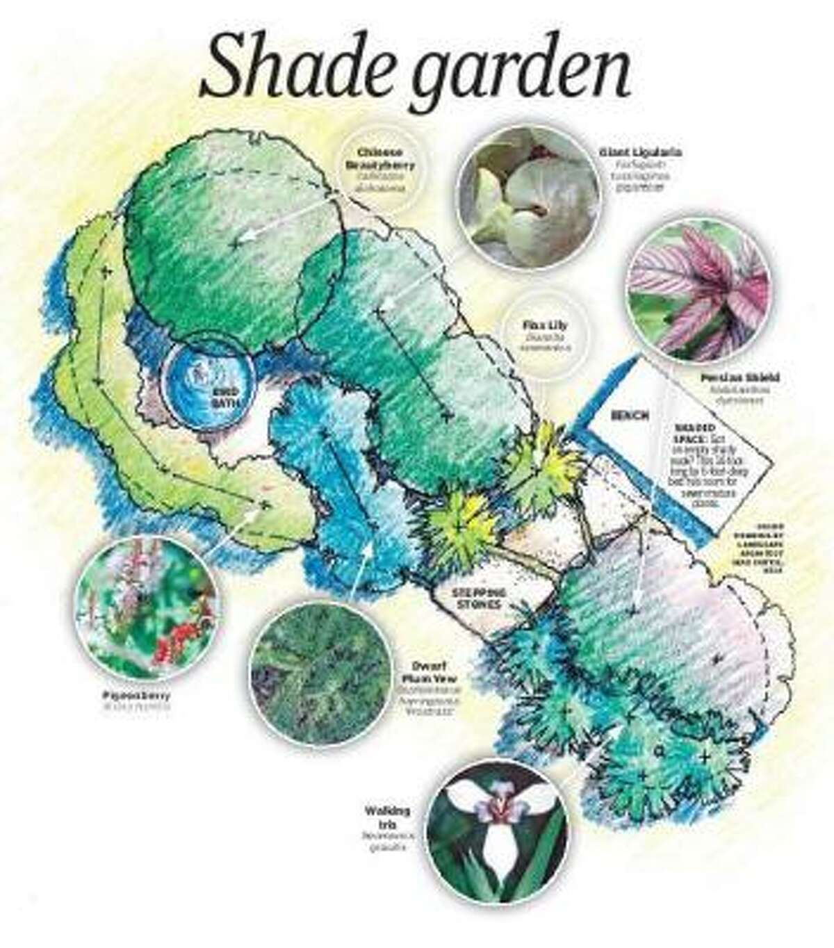 """To get a full-sized version of this garden guide, please click on the link """"Kathy Huber's shade garden design"""" below, under MORE ON BULB MART."""