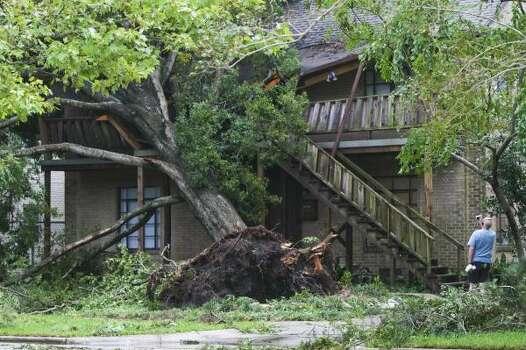 Una persona observa un árbol caído sobre una casa en Southgate Blvd., cerca de Rice University, debido al huracán Ike. Photo: Steve Ueckert, Houston Chronicle