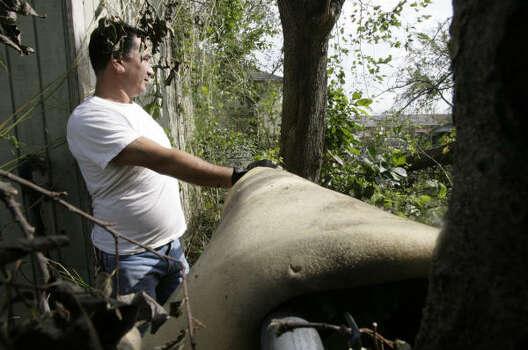 Ronald Mondragón observa la destrucción que Ike le provocó a su casa debido a los árboles que cayeron con la fuerza de los vientos. Photo: Julio Cortez, Houston Chronicle