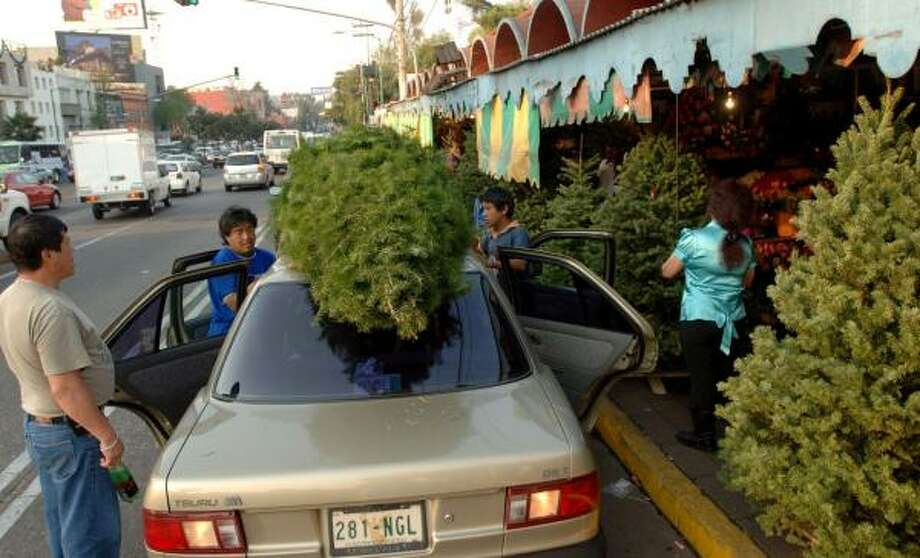 At a flower market on a busy Mexico City street, Guillermo Prieto, 47, left, watches as a U.S.-grown Christmas tree is tied atop his car. The cost of a tree is more than double the average in the U.S. Photo: LUIS J. JIMENEZ, FOR THE CHRONICLE