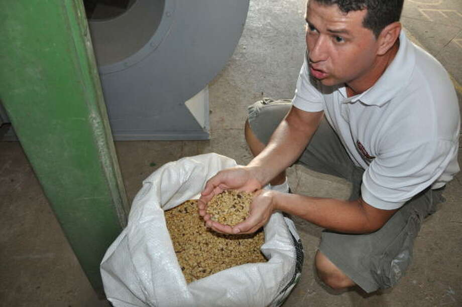 Dorian Mendez explains the organic coffee process at Díria Coffee Plantation in Guanacaste, Costa Rica. Photo: Melissa Ward Aguilar, Staff