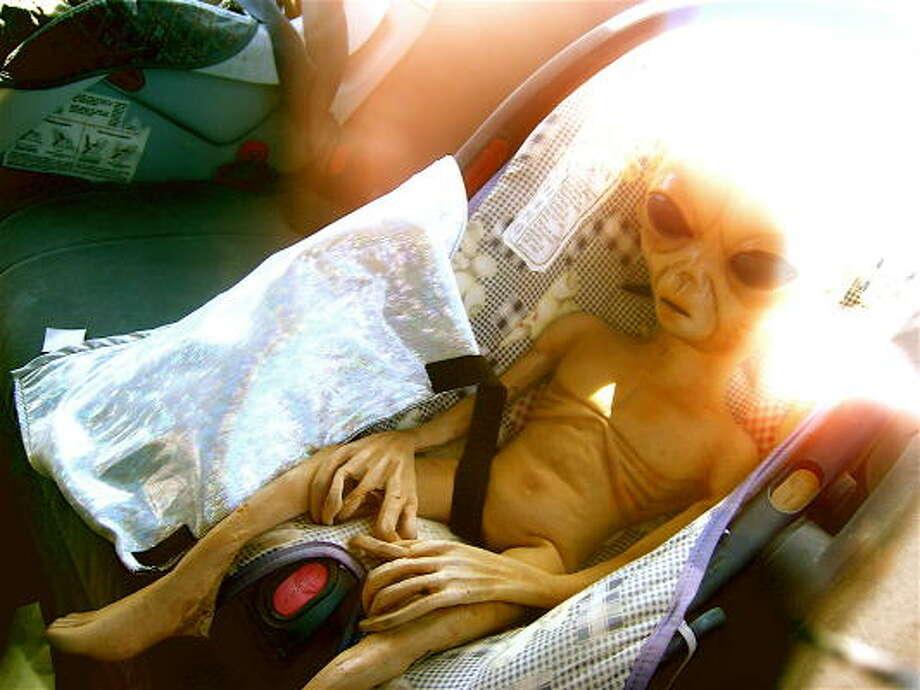 Name:Ripley  Geek origin: Sigourney Weaver's character in Aliens Photo: Flickr: Pocheco
