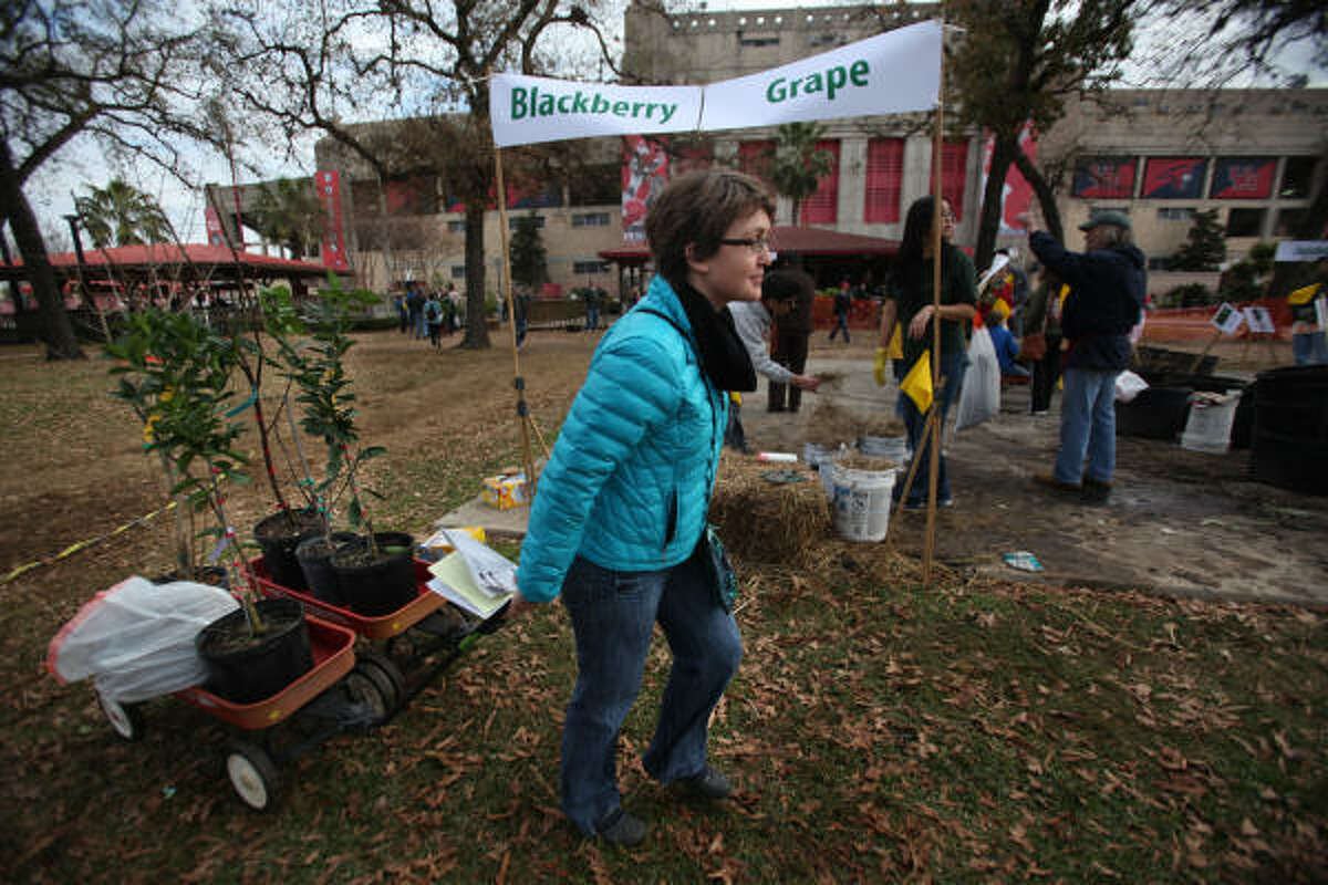 Ashley Clemmer Hoffman pulls two wagons full of plants purchased for Project Row House during the Urban Harvest fruit sale.