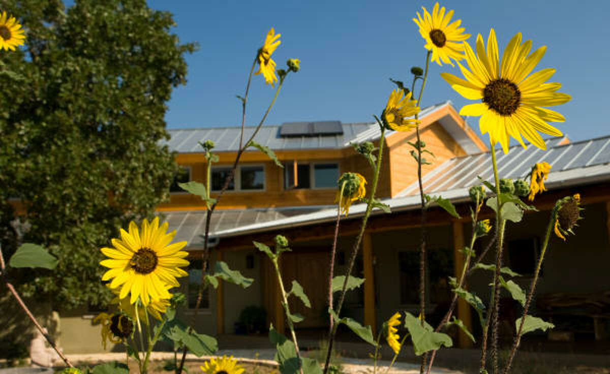Native trees and flowers surround the Austin home of Laurel Treviño and Carlos Torres-Verdín. The home received a Platinum rating from the U.S. Green Building Council and a 5-star rating from Austin Energy's Residential Green Building Program.