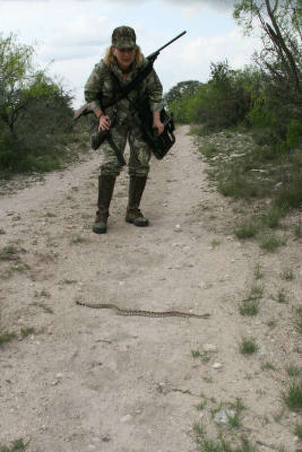 Spring turkey hunting puts tens of thousands of Texans afield during April, a peak month for snake activity. Photo: Shannon Tompkins, Chronicle