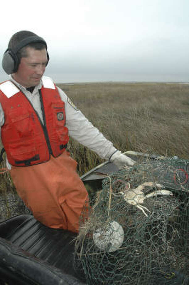 Derelict crab traps such as this one collected from East Galveston Bay by Matt Whitbeck of the Anahuac National Wildlife Refuge can be death machines for bay life. Photo: Shannon Tompkins.