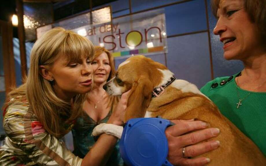 Lots of old friends visited Whitney Casey on her last day as host of Great Day Houston, including her former dog Nolita and Nolita's current owner, Pat Hollensbe, right. Photo: MAYRA BELTRÁN, CHRONICLE