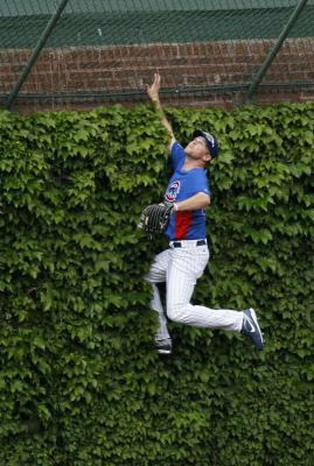 Cubs relief pitcher Kerry Wood climbs the ivy in left field as he's chasing a fly ball hit during batting practice. Photo: Charles Rex Arbogast, Associated Press