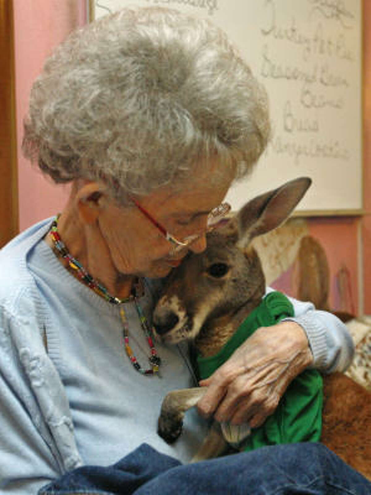 In this March 30, 2011 photo, Nette Hudson cuddles Irwin at Broken Arrow Nursing Home in Broken Arrow, Okla. Irwin's owner Christie Carr suffers from depression and has found solace in Irwin, but local city officials worry that the partially paralyzed therapy pet could become a public safety risk.