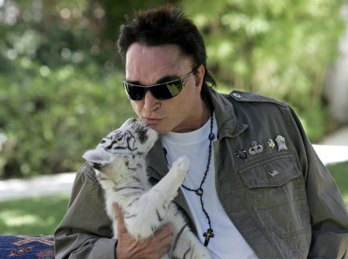 Maybe a kiss is needed to make up. Roy Horn, illusionist with Siegfried & Roy, kissed this six-week-old white tiger cub at his Las Vegas home in 2008. Horn was mauled by a full-grown white tiger on stage in 2003.