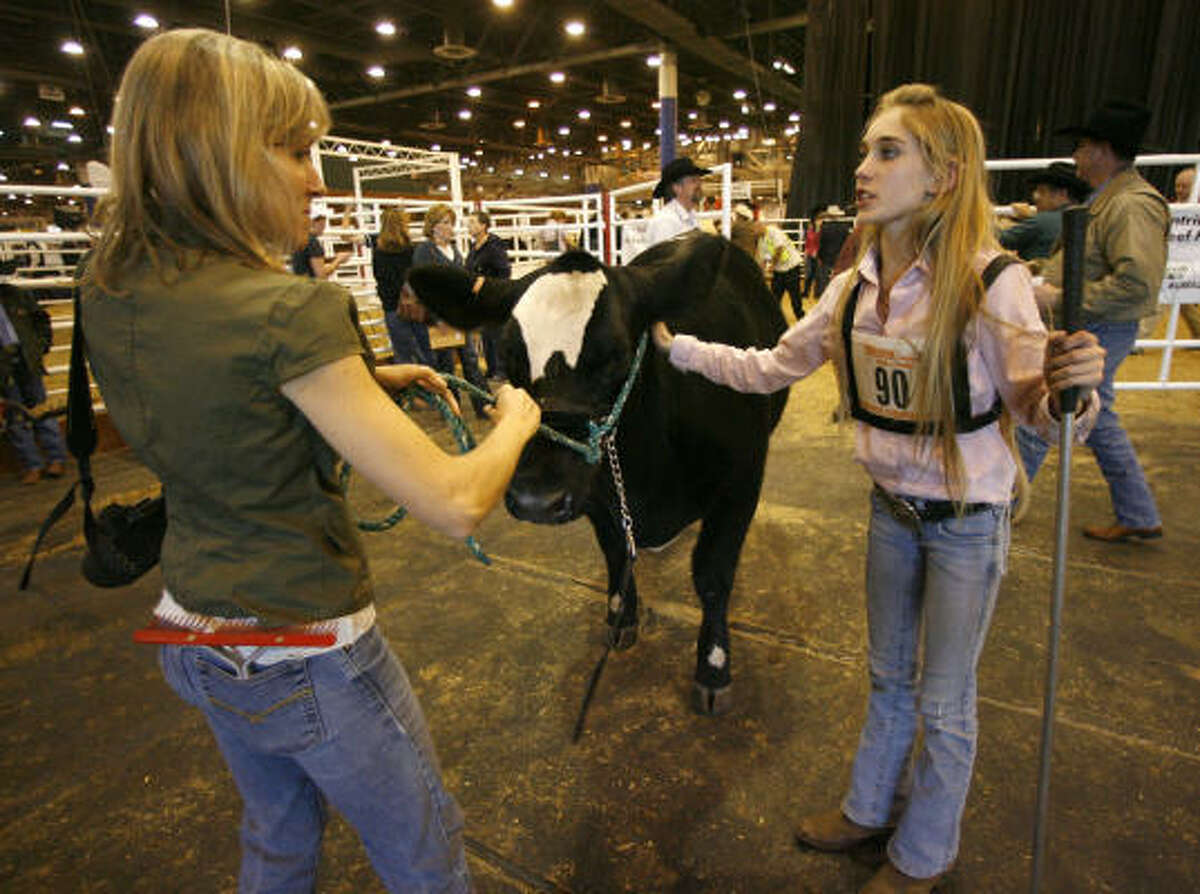 Megan Stammann, 15, hands Coco to her mother, Sherry, after the judges failed to find the tattoo of another contestant (who was disqualified and allowed Megan to move from 6th to 5th) after the scramble heifer show at the Houston Livestock Show and Rodeo, in Reliant Center.