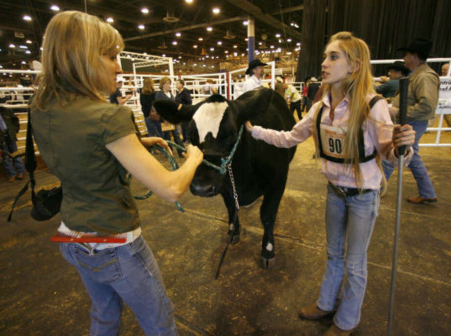 Megan Stammann, 15, hands Coco to her mother, Sherry, after the judges failed to find the tattoo of another contestant (who was disqualified and allowed Megan to move from 6th to 5th) after the scramble heifer show at the  Houston Livestock Show and Rodeo, in Reliant Center. Photo: Karen Warren, Chronicle