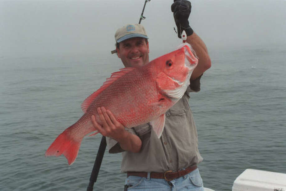 Despite improving populations of red snapper, federal fisheries set this year's recreational fishing season for the popular marine species to run only 48 days. The June 1-July 18 season is the shortest snapper season ever imposed on anglers. Photo: Joe Doggett, HOUSTON CHRONICLE