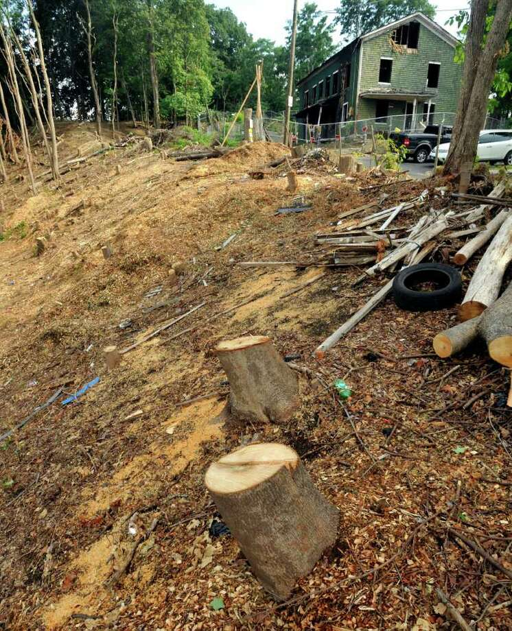 Danbury to investigate clear-cutting of trees on city-owned