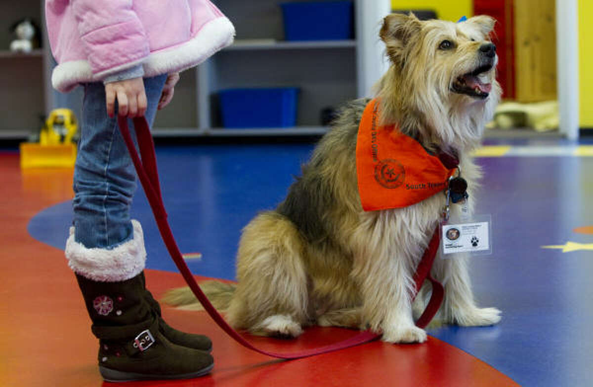Maggie, Chris Mort's dog, stands with a young child in a playroom at the Children's Assessment Center. The 11-year-old terrier mix loves people and other dogs.