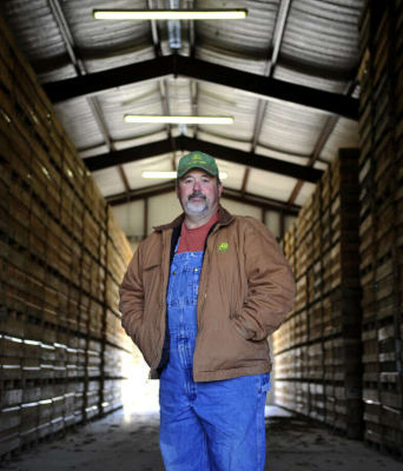 Tony Phillips, shown at his sweet potato store house in Grand Saline, says more farmers are cutting back or quitting the business. Photo: Christopher R. Vinn, Tyler Morning Telegraph