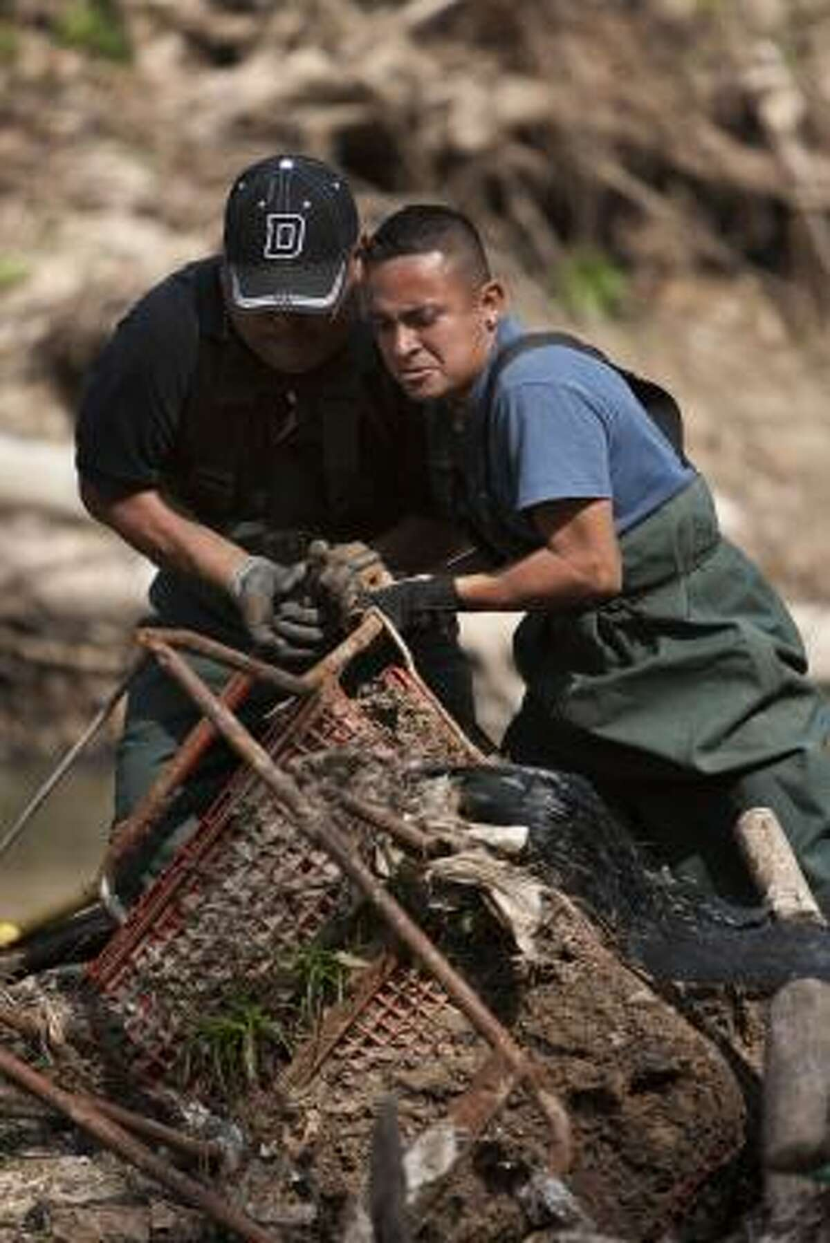 Cutberto Peréz, left, and Jilberto Rivera struggle Monday to pull a shopping cart out of Buffalo Bayou. Most of the shopping carts end up in this area via the Bering Ditch.