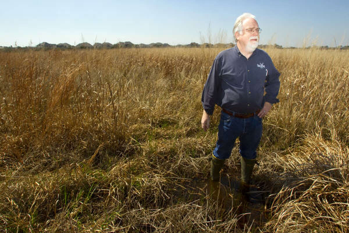 John Jacob, Ph.D., of Texas Sea Grant / Texas AgriLife Extension Service of the Texas A&M University System, studies the area in the Benoit Prairie Preserve wetlands near the Mar Bella development Wednesday in League City.