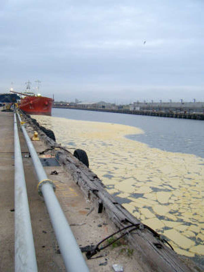 Beef tallow floats in the Houston Ship Channel. About 15,000 gallons of the animal fat spilled from a storage tank. Photo: U.S. Coast Guard, Associated Press
