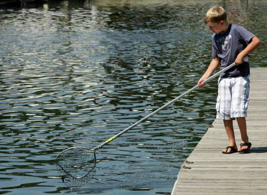 Gus Natale, 9, of Milford, searches for crabs in Milford harbor on Monday, August 1, 2011. Photo: B.K. Angeletti / Connecticut Post