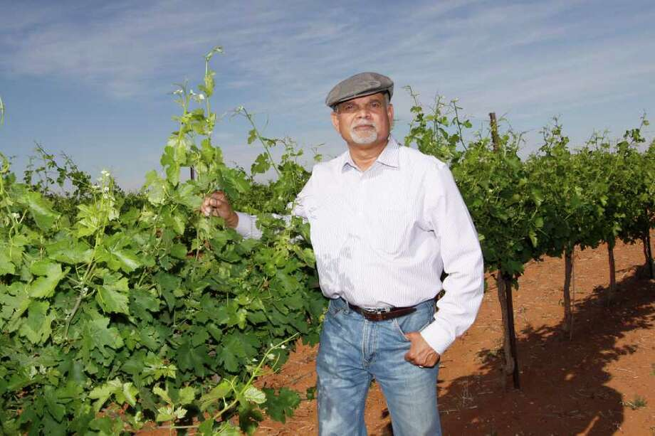 A native of India, Vijay Reddy has planted 20 varietals on 100 acres outside of Brownfield in the Panhandle near Lubbock. Photo: HOUSTON CHRONICLE