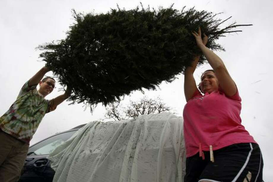 T.C. Jester Park is one of several locations where trees can be dropped off for recycling after the holidays. Photo: Johnny Hanson, Chronicle
