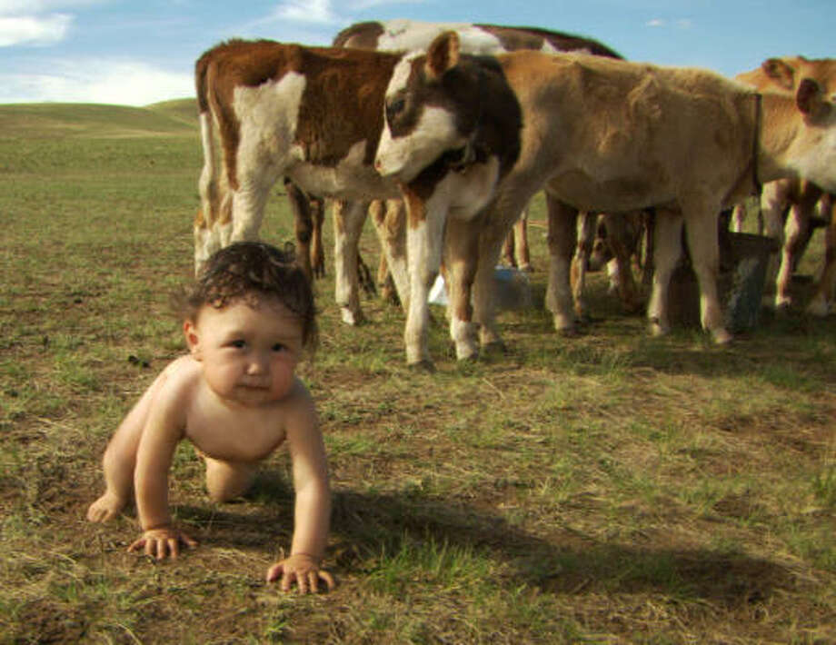 Bayarjargal, who lives in Mongolia with his family, is followed from birth to first steps in the film. Photo: FOCUS FEATURES